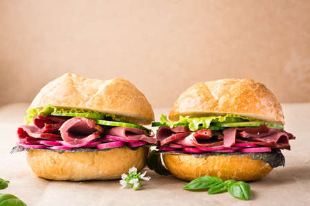 A couple of fresh burgers with pastrami, cucumber, radish and herbs on craft paper. American fast food. Copy space Standard-Bild