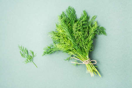 A bunch of fresh dill tied with a rope on a green background. Vitamin greens in a healthy diet. Top view Standard-Bild