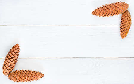 spruce cones on a white wooden background