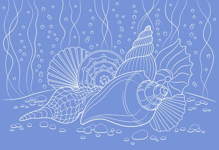 algaes: Vector illustration with seashells can be used for graphic design, textile design or web design
