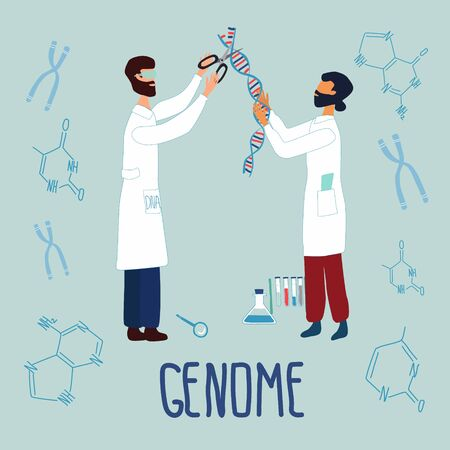 Scientists editing DNA structure surrounded by chromosomes, nucleotides, test tubes, loupe. Genetic engineering and genome or sequencing concept. vector illustration in trendy cartoon style.
