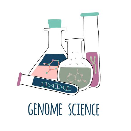 Four test tubes with helix DNA, chromosome, nucleotides. Genome science text. Genetic engineering and gene sequencing concept. Colorful doodle vector illustration in trendy cartoon style.