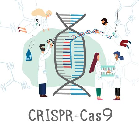 Scientists illustrated how CRISPR CAS9  works. Gene editing tool research . Genome sequencing and genetic engineering concept in vector. Human genome project. Vector illustration
