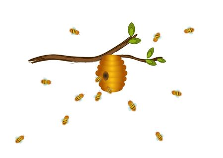 A beehive hanging on a branch and bees flying towards it, isolated on a white background. Illustration. vector Foto de archivo - 130044509