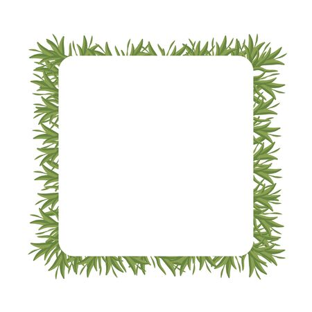 Frame with free space of isolated sprigs of green rosemary. Flat vector. Illustration.
