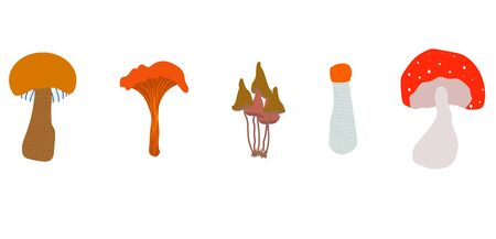 Edible and poisonous mushrooms on a white background. flat vector. illustration Banque d'images - 132018217
