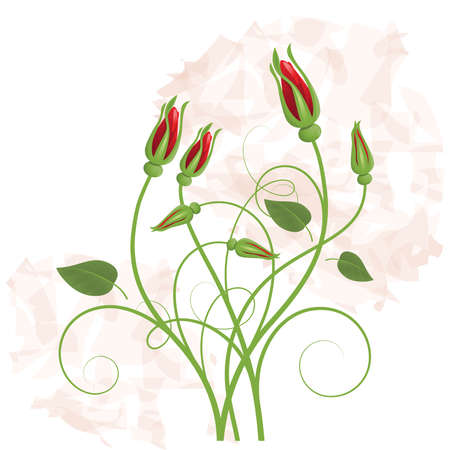 Background with   bouquet from red rose Illustration
