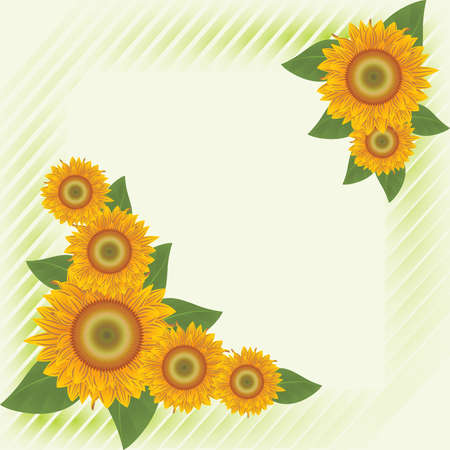 Abstract orange sunflowers on the green striped background  Vector
