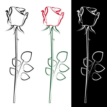 A collection of three silhouettes of roses Vector