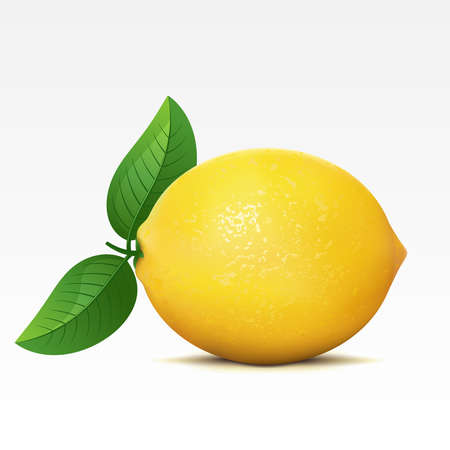 fruited: Lemon on a white background