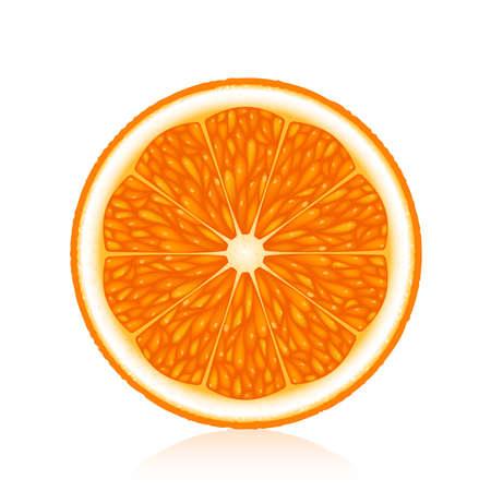 fruited: Half an orange on a white background Illustration