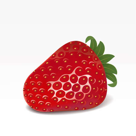 fruited: Strawberry on a white background