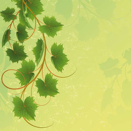 Vine on a yellow background Mask Vector