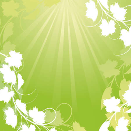 Vine on a green background Mask Vector