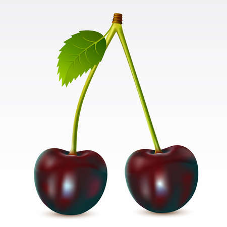 fruited: Two cherries on a white background