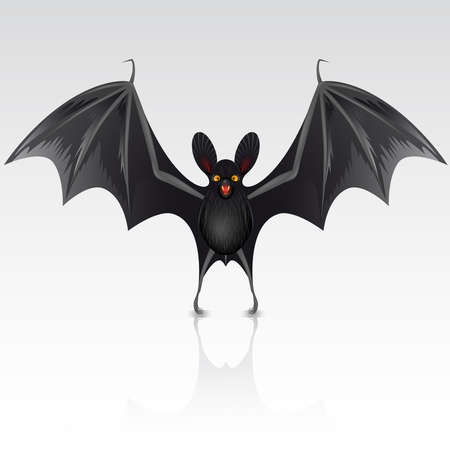 Black bat on a white background Vector