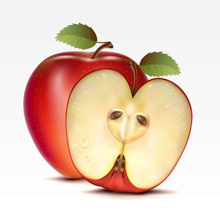 pomme rouge: Deux pommes rouges sur fond blanc Illustration