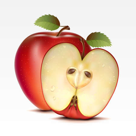 red apples: Two red apples on a white background Illustration