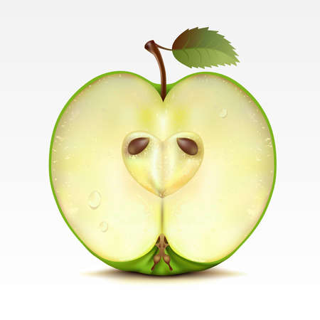 Half a green apple on a white background Vector