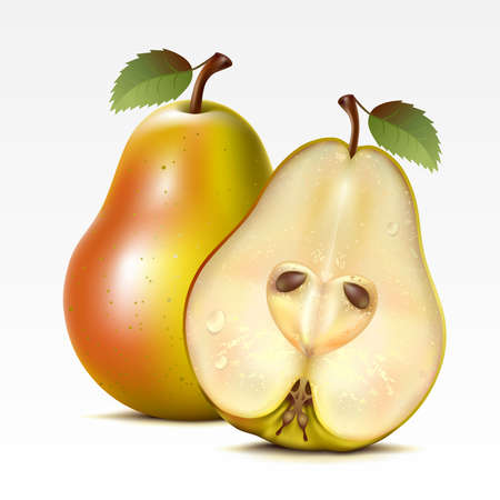 fruited: Two yellow pears on a white background Illustration