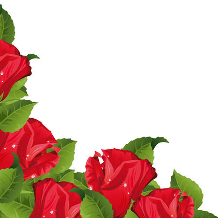 rosebud:  White background with red roses.  Clipping Mask