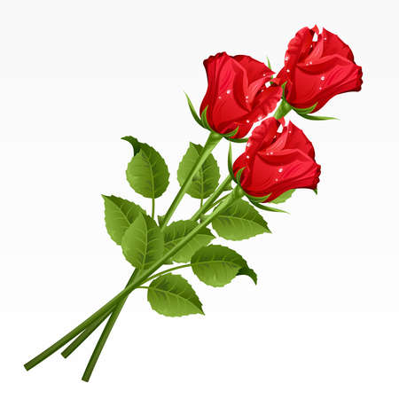 single object: Three red roses on a white background