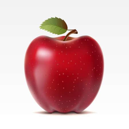 manzana: Manzana roja sobre fondo blanco  Vectores