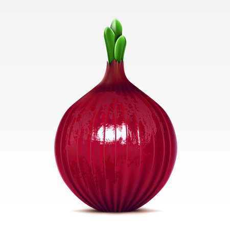 Red lettuce onion on the white background