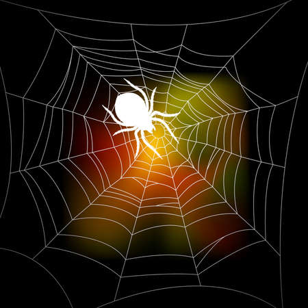 spiders web: Autumn background with a spiders web Illustration