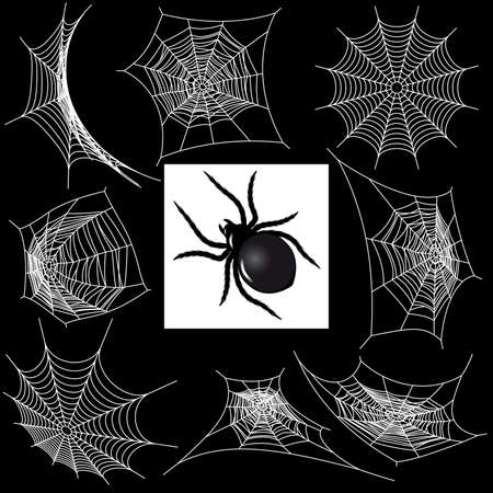 spider web: Set with a spiders webs and spider Illustration