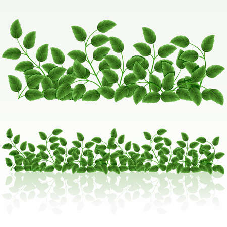 Grass green border.(can be repeated and scaled in any size) Vector