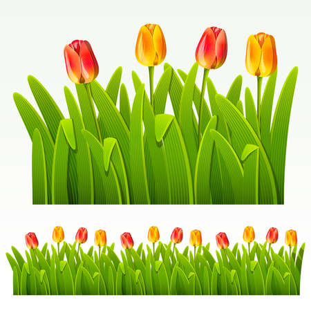 green leaves border: Herbaceous border of red tulips(can be repeated and scaled in any size)