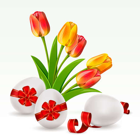 tulips isolated on white background: Easter background with egg decorated and tulips