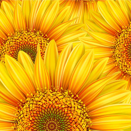 Background with yellow sunflowers. Mesh. Clipping Mask Vector