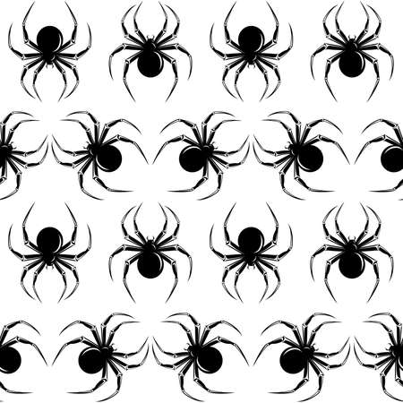 springe: Halloween seamless  with black  spiders on the white background