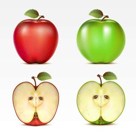 Satz von roten und grünen Äpfeln und ihre Hälften