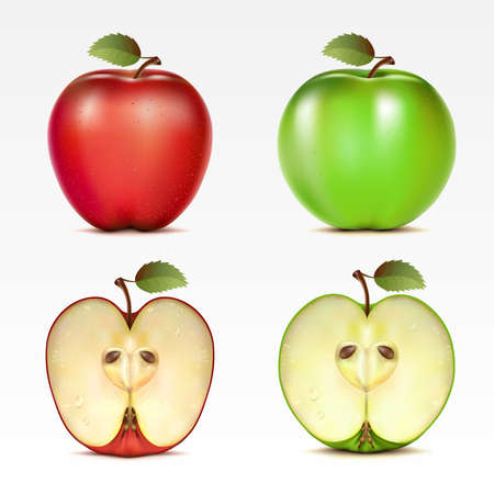 Set of red and green apples and their halves Vector