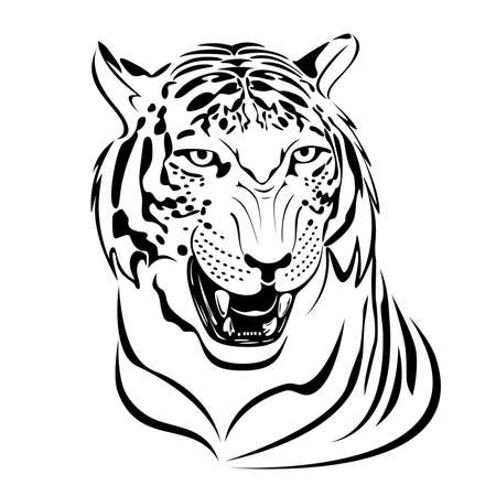 Snarling tigers head illustration in black lines Vector