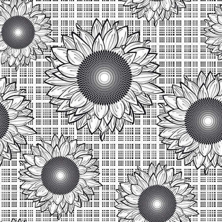 Seamless from sunflowers.Black and white Vector