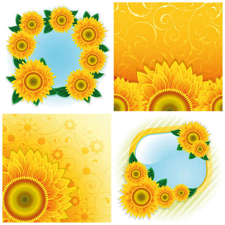 cornfield: Collection of four backgrounds with sunflowers.