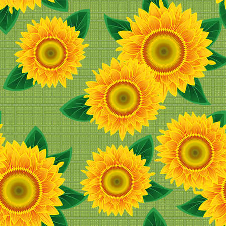 Seamless from orange sunflowers and green leaves. Stock Vector - 9692050