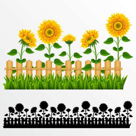 Grenze mit Sonnenblumen und Zaun.(können wiederholt und werden in jeder Größe skaliert) Illustration