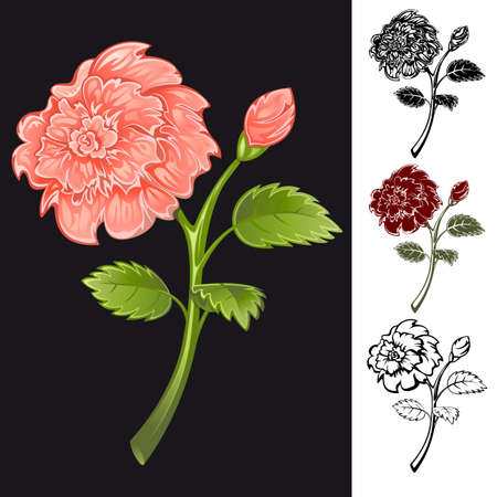 Collection of flowers of different colors. Stock Vector - 9828109