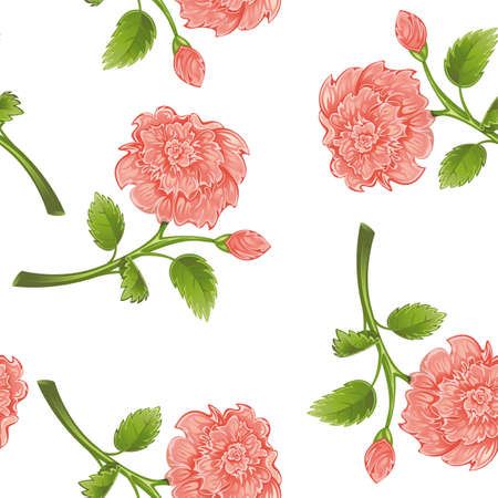 Seamless from pink peony and green leaves Stock Vector - 9828111