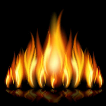 Flames of different shapes on a black background.  Stock Vector - 11218741