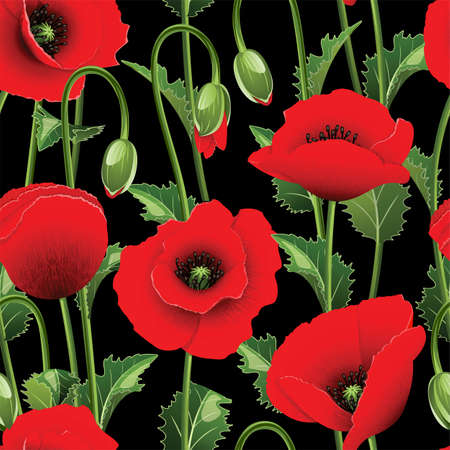 Seamless from red poppies and green leaves Clipping Mask  can be repeated and scaled in any size  Vector