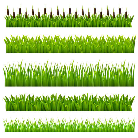 Set from grass of green border  can be repeated and scaled in any size  Stock Vector - 13483706