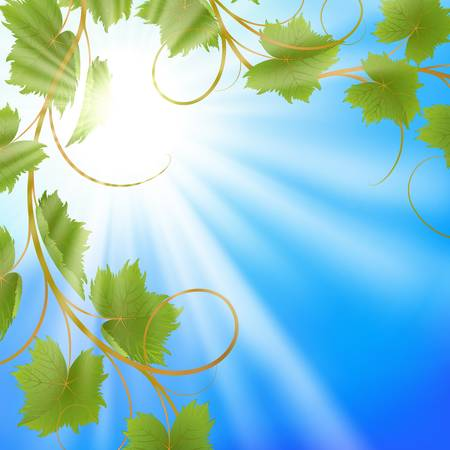 flower vines: Summer background with blue sky and vine  EPS10  Mesh  Clipping Mask Illustration