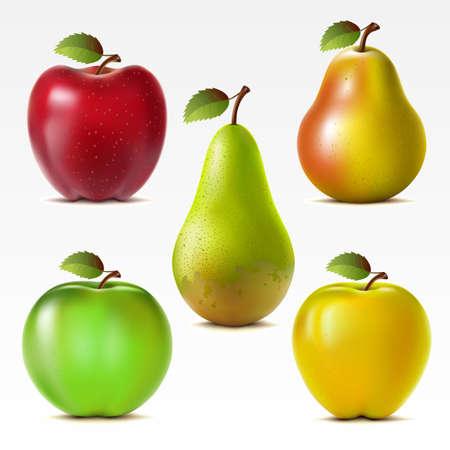 pera: Conjunto de manzanas rojas, amarillas y verdes y las peras de malla Vectores