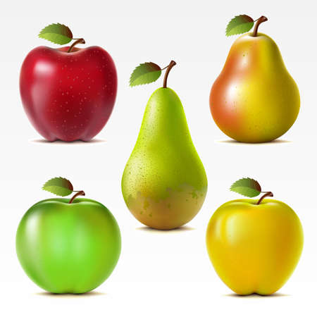Set of red, yellow and green apples and pears  Mesh   Vector